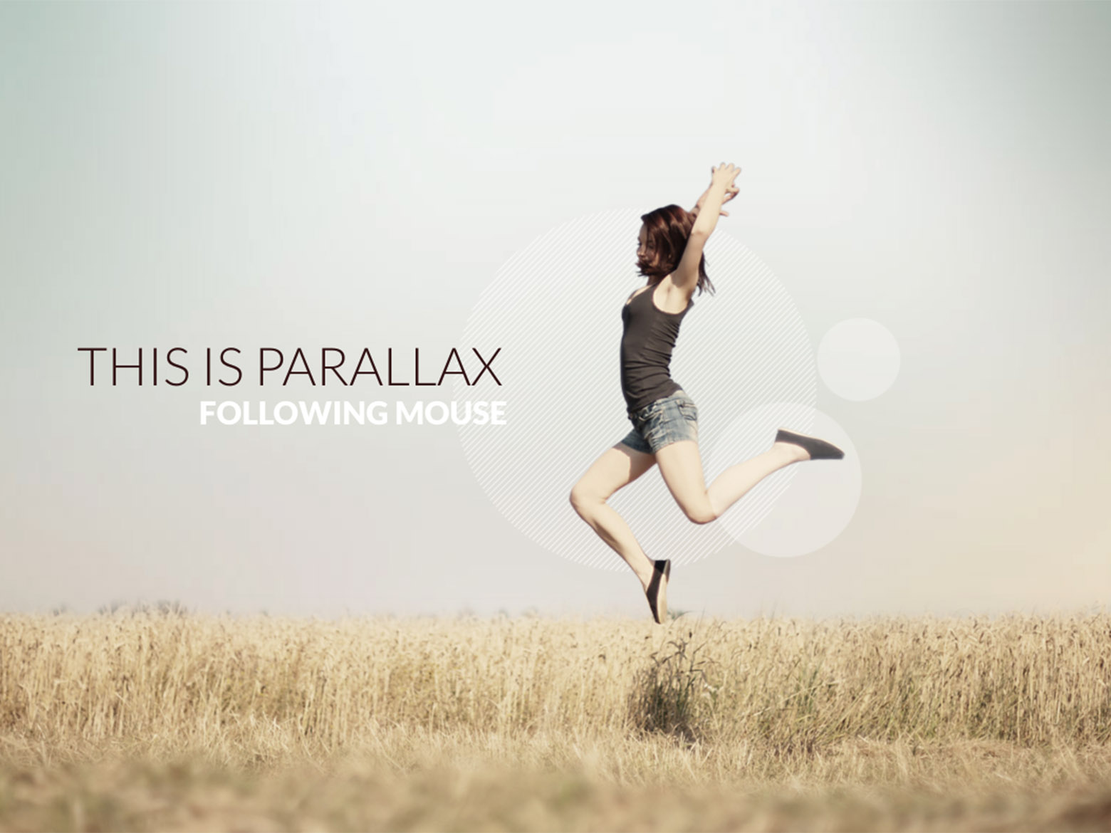 slider with follow mouse parallax master slider plugin