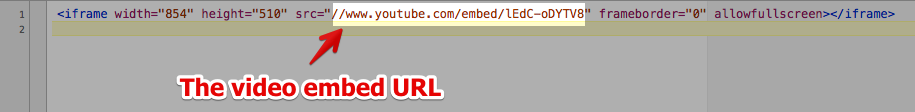 Get YouTube/Viemo Embed URL