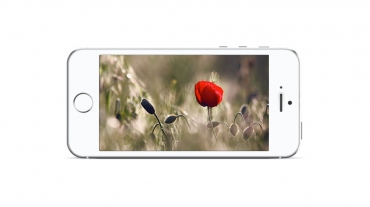 Slider in Landscape Smartphone